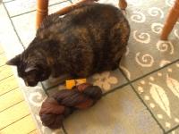 guiness-yarn